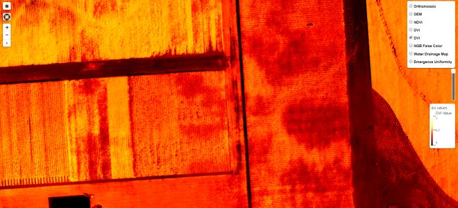 Near Infrared DVI